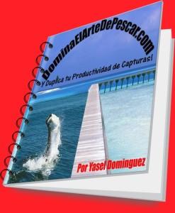 empaque-pdf